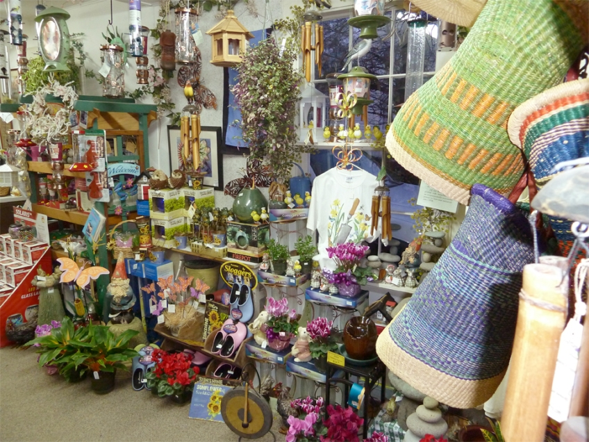 Houseplants and gift shop