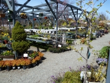 A view of the Nursery in early spring