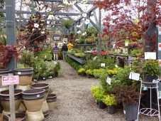 Nursery in spring during the Weaverville Art Cruise