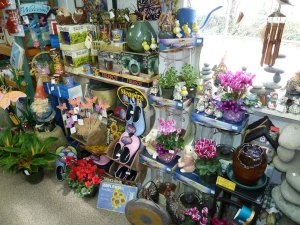 Gifts and houseplants