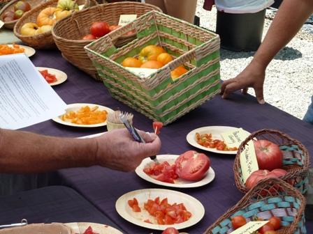 Tomato Tasting at Trinity Nursery