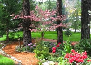 Pink Dogwood Garden